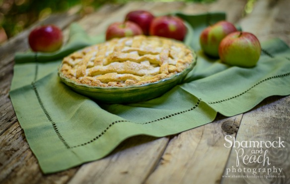 Apple pie-Sept2014-5