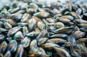 Local sea food