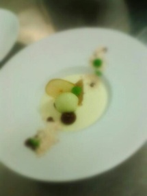 Vanilla Panna cotta - Textures of Apple