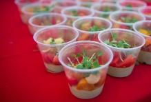 Tomato festival-July 2016-22